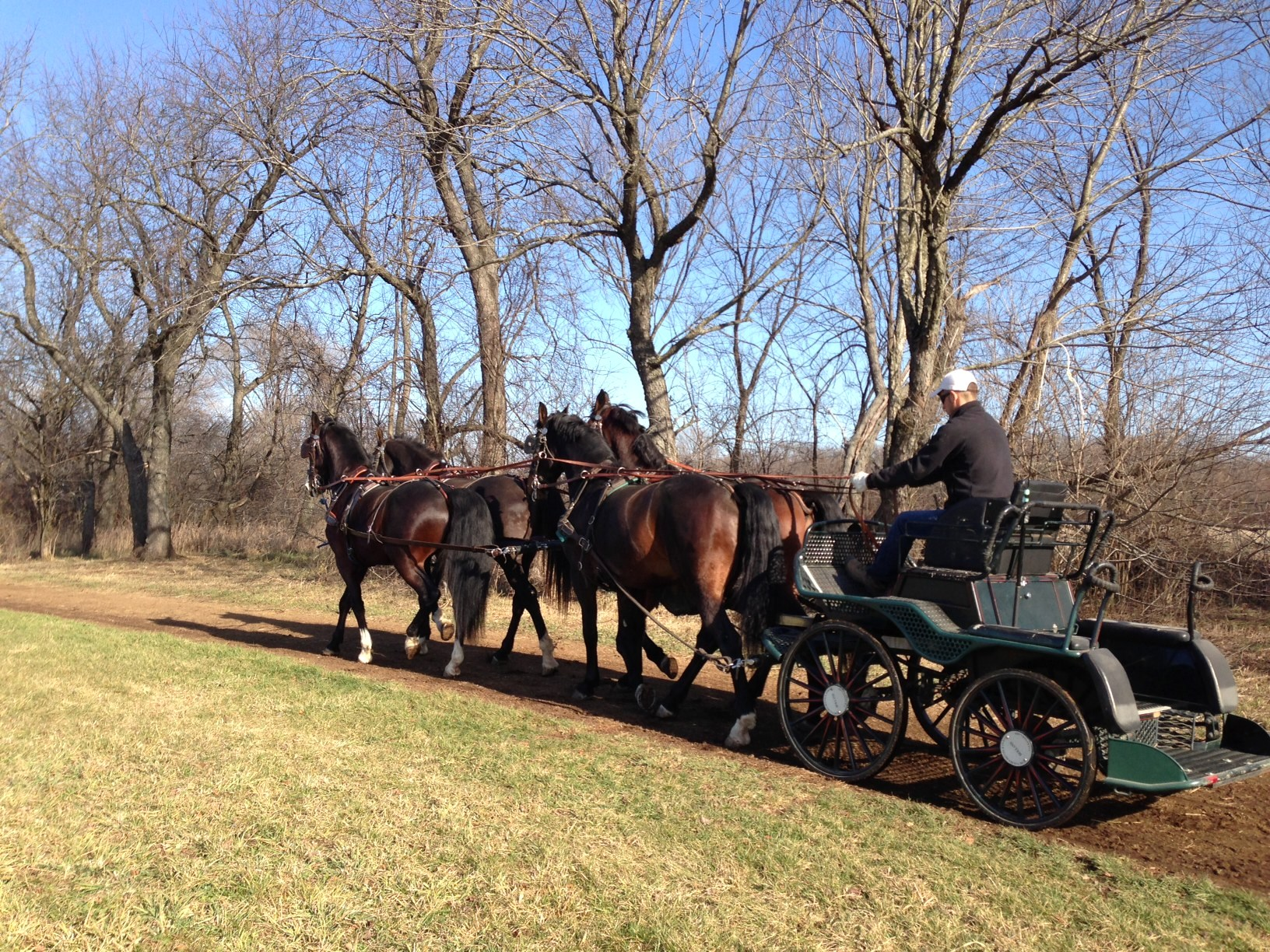 pleasure time farm driving marathon